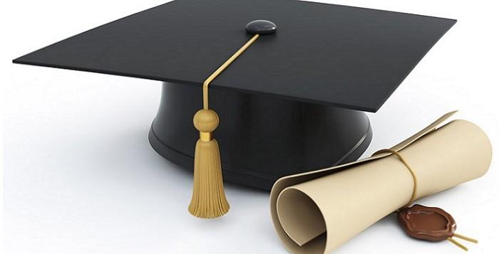 Undergraduate Studies in Sweden